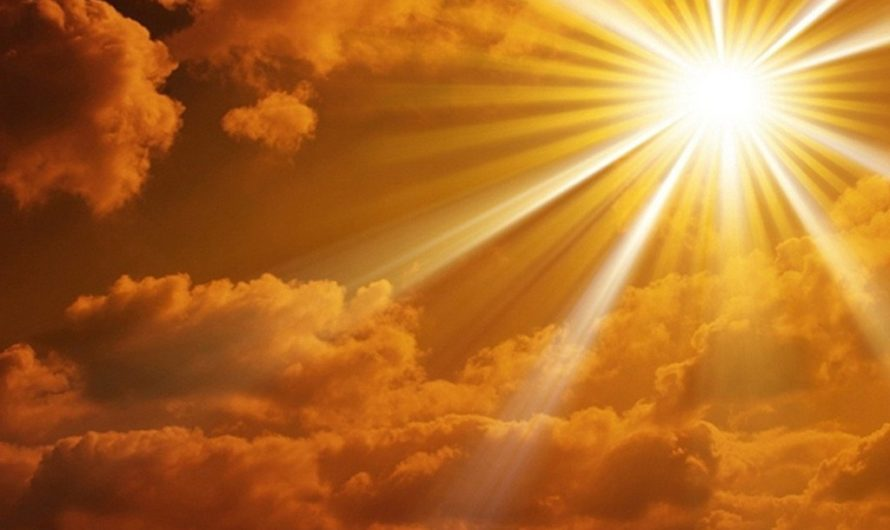 Солнышко в зените